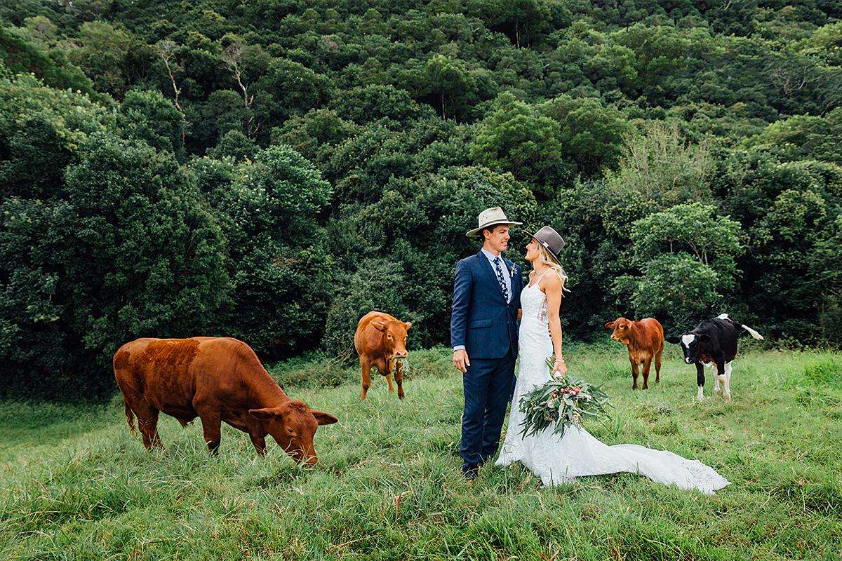 maleny botanical garden wedding